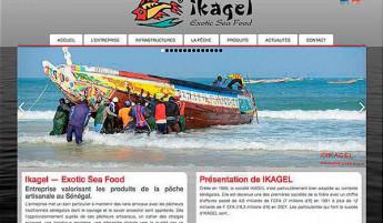 ikagel.com